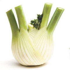 Fennel (each) , S03H-Veg - HFM, Harris Farm Markets
