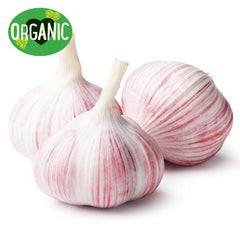 Garlic Organic (head)