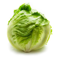 Lettuce Iceberg (whole) , S02M-Veg - HFM, Harris Farm Markets