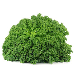 Kale (bunch) , S09S-Veg - HFM, Harris Farm Markets