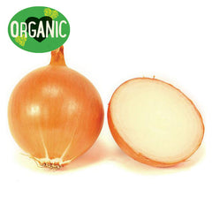 Onion Brown Organic Each