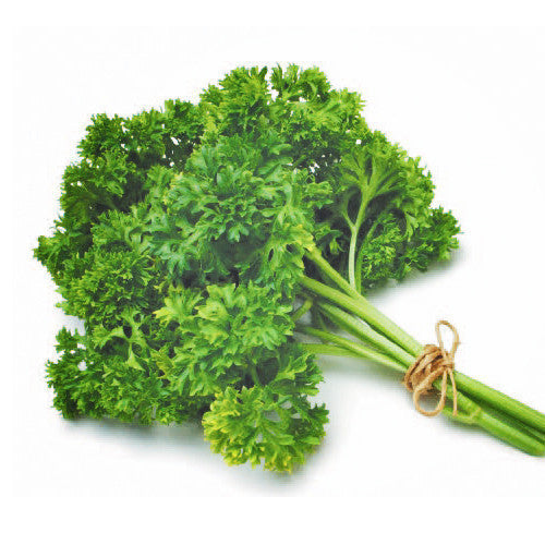 Parsley Curly (bunch) | Harris Farm Markets