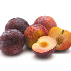 Plums Tegan Blue (each) , S07S-Fruit - HFM, Harris Farm Markets