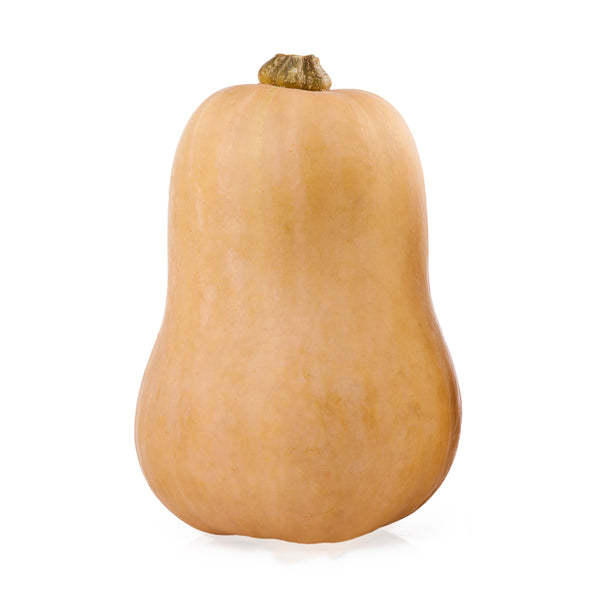 Pumpkin Butternut (whole)