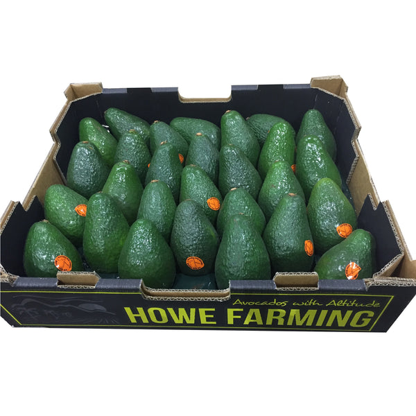 Avocados (Tray Sale) | Harris Farm Online