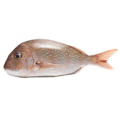 Sydney Fresh Seafood Baby Snapper Scaled and Gutted min 500g