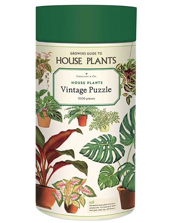 Cavallini & Co 1000 Piece Puzzle - House Plants