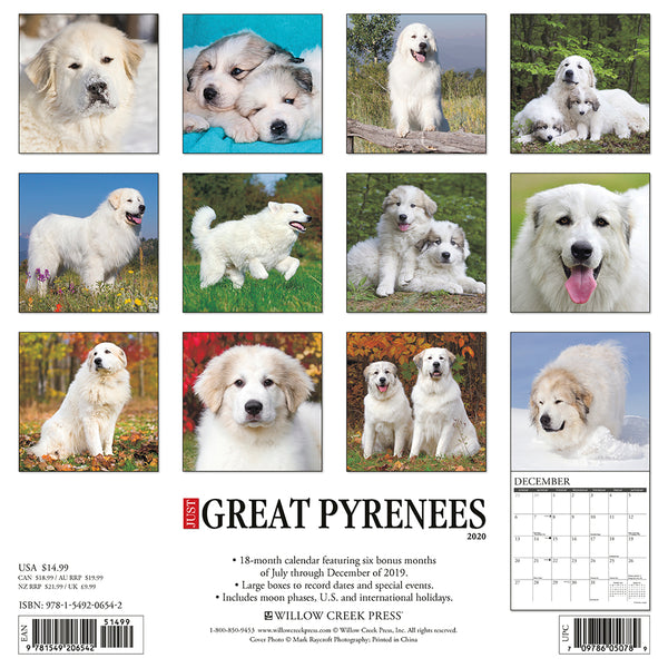 Just Great Pyrenees 2020 Calendar