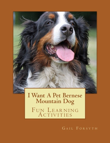 I Want A Pet Bernese Mountain Dog