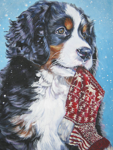 Bernese Christmas Cards - sold individually