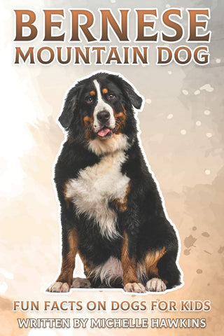 Bernese Mountain Dog: Fun Facts on Dogs for Kids #27