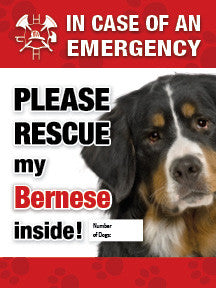 In Case of Emergency Window Sticker - bernese