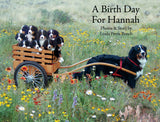 """A Birth Day for Hannah - NEW BOOK!"""