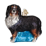 Bernese Mountain Dog Glass Ornament