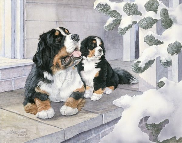 Bernese Holiday, Limited Edition Giclee