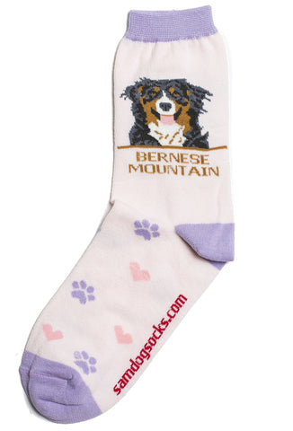 Bernese socks for women - pink & purple