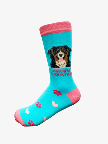 Bernese socks for women - turquoise & hot pink
