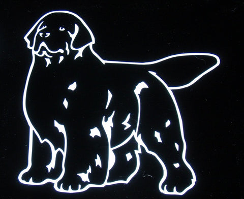 Newf Decal For Tinted Glass - silver