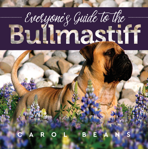 """Everyone's Guide to the Bullmastiff"""