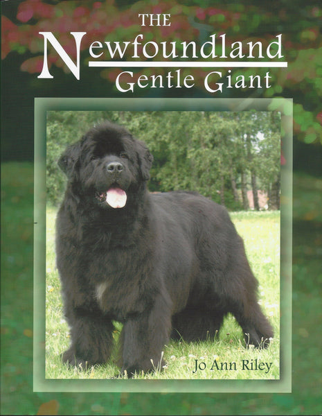"""The Newfoundland: Gentle Giant"""
