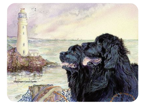 Newfy Charm, Limited Edition Print