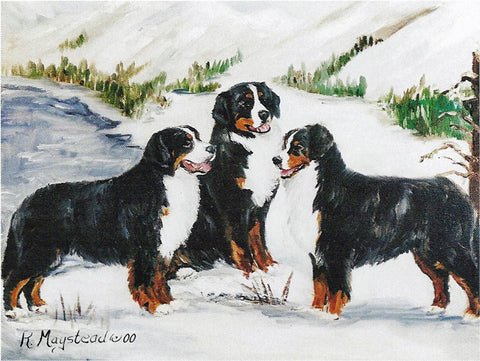Bernese Blank Note Cards 3 dogs