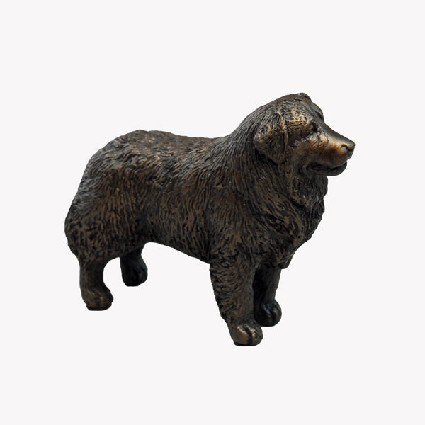 Standing Bernese Mountain Dog - small bronze sculpture