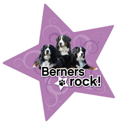 Berners Rock - Magnet