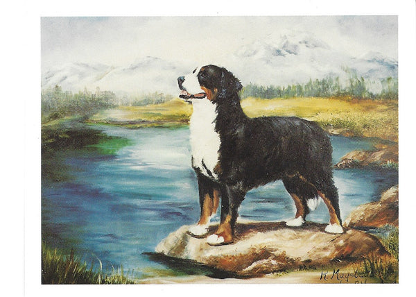 Bernese Blank Note Cards 1 dog