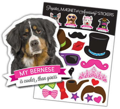 Bernese Pupster Magnet & Accessory Stickers