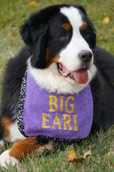Create your own dog drool bib - (your dogs name or saying)