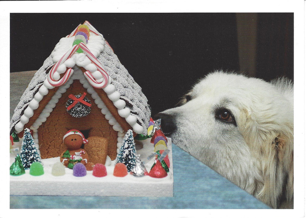 Bosco & Gingerbread House Christmas Cards - 10 cards\