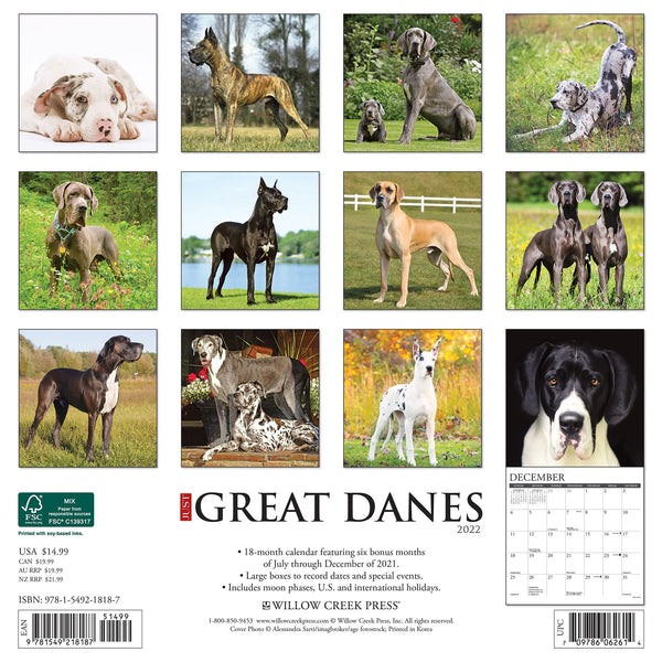 just great danes 2022 calendar
