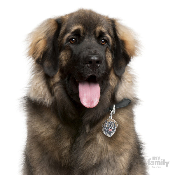 Leonberger Tag