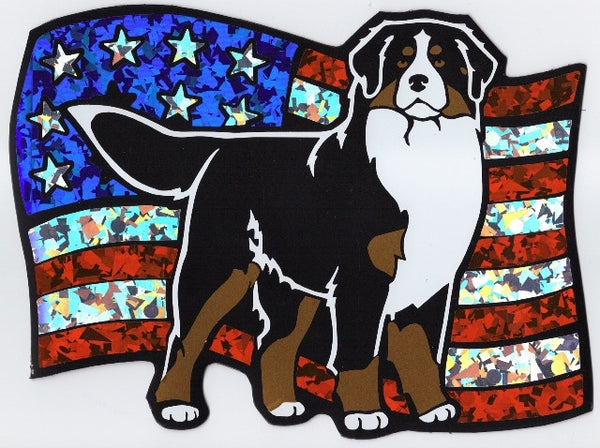 USA Bernese - Magnet