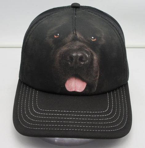 Adult Trucker Hat - Newfoundland
