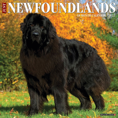 just newfoundlands 2022 calendar