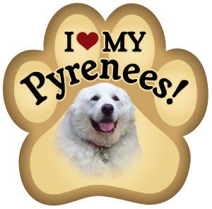 I Love my Pyrenees - Magnet