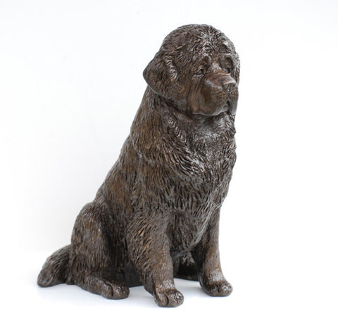 Sitting Newfoundland - Signature Series