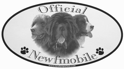 Oval Newfmobile Sticker