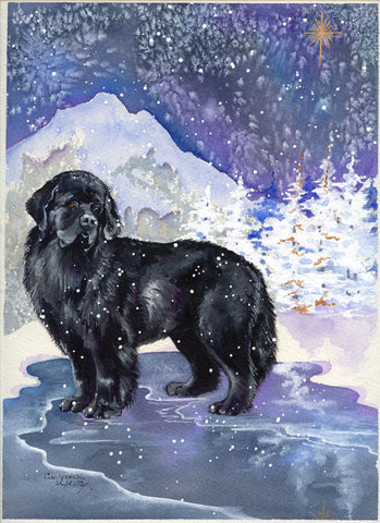 """Newfie Noel"" Christmas Cards - 12 cards"