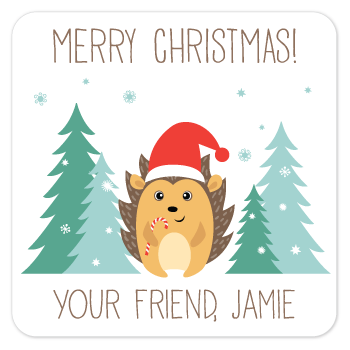 personalized Christmas gift labels | winter hedgehog