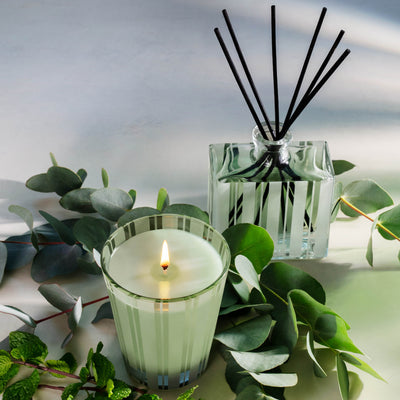 Nest Fragrances Reed Diffuser in Wild Mint & Eucalyptus