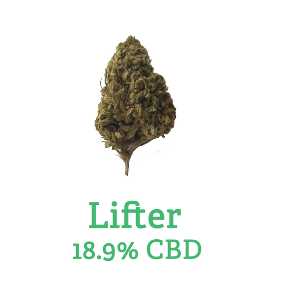 Lifter Hemp Flower - 18.9% CBD - Calypso CBD Cannabis