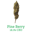 Pine Berry Hemp Flower - 18.1% CBD - Calypso CBD Cannabis