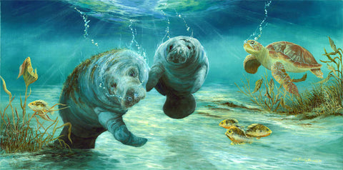 Manatees with Turtle