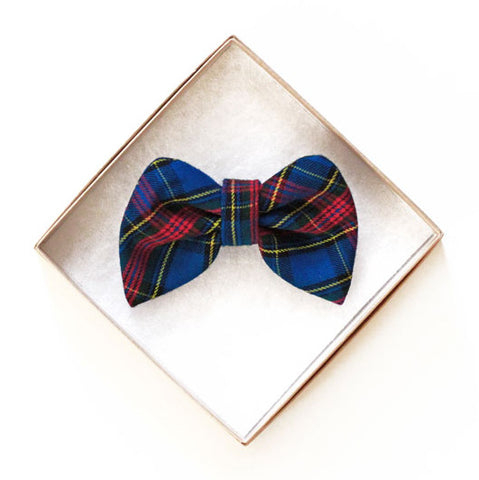 Preppy Blue Doggy Bow Tie