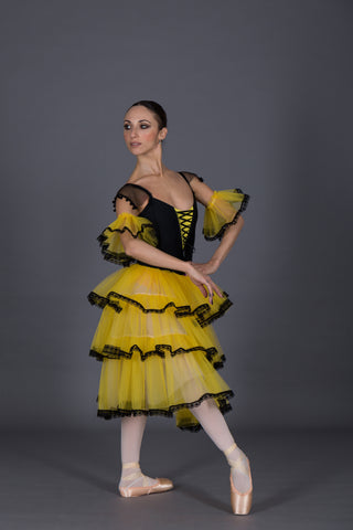 Don Quixote Kitri variation Act I