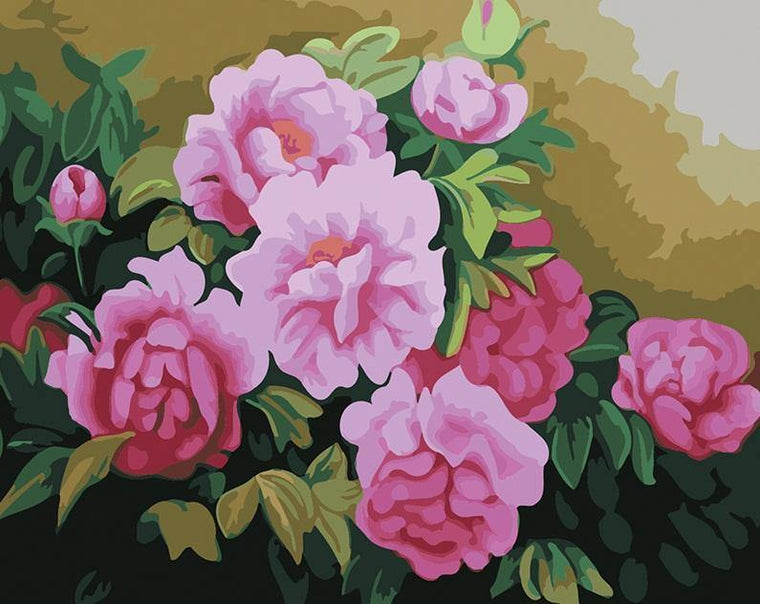 Amazing Garden Roses Paint by Numbers