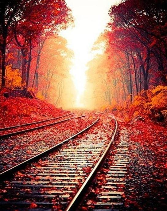 Autumn Rail Track Paint by Numbers